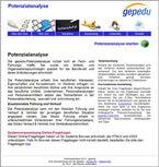 Potenzialanalyse Assessment